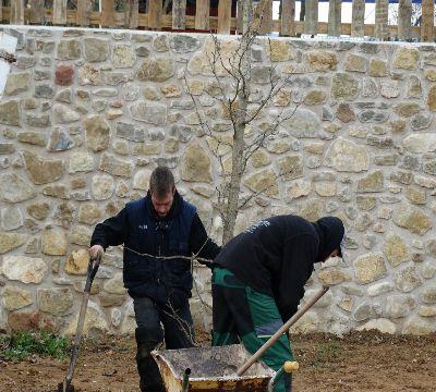 Elements-vegetals-construccio-nou-jardi-girona